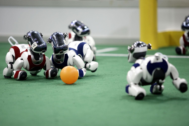 Drie keer raden waar die robothonden naartoe willen (foto:flickr/northern_bites)