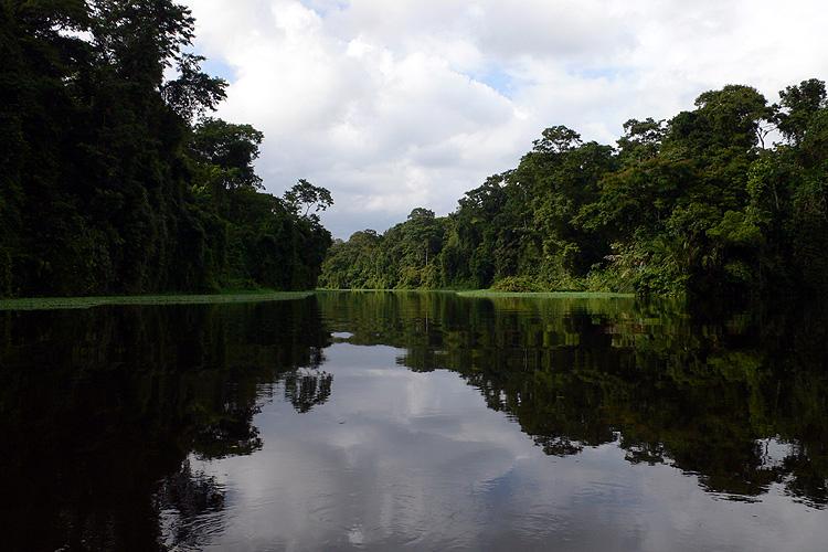 Costa Rica, Tortuguero
