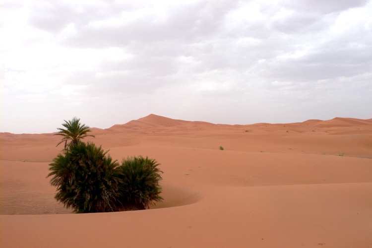 Marokko, Merzouga, Erg Chebbi