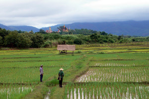 Birma, platteland bij Tachilek