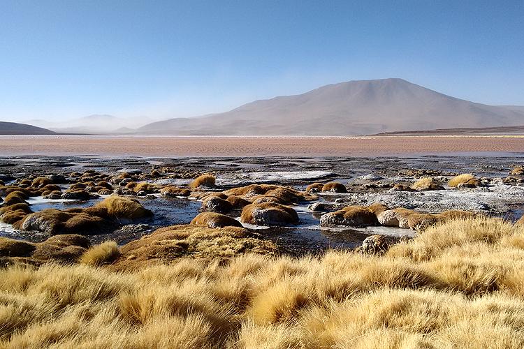 Bolivia, Laguna Colorada