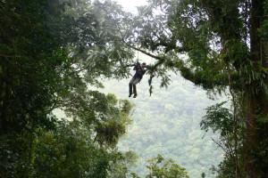 Monteverde ziplines