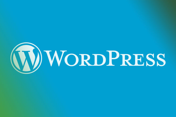 WordPress plugin helpt sites te versnellen