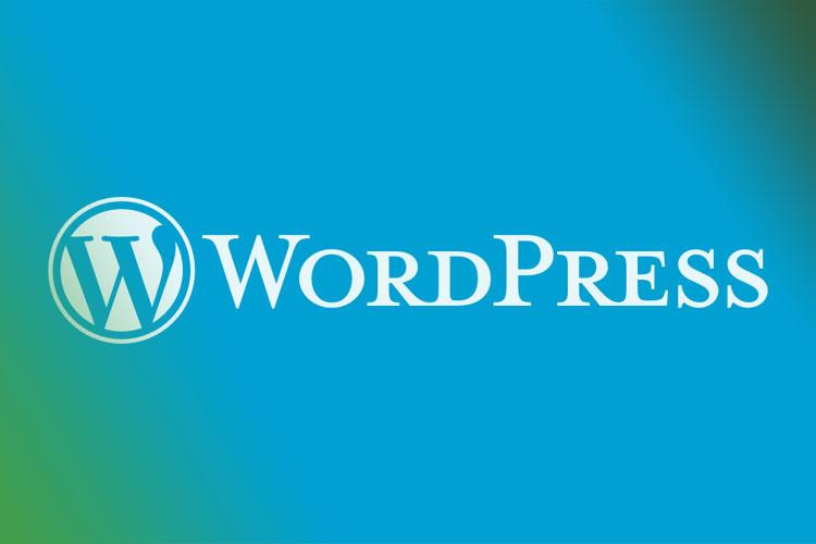 WordPress plugin helpt sites te versnellen