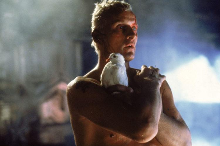 De film Blade Runner, over de vraag of 'replicanten' mensenrechten hebben, is een vorm van morality fiction te noemen