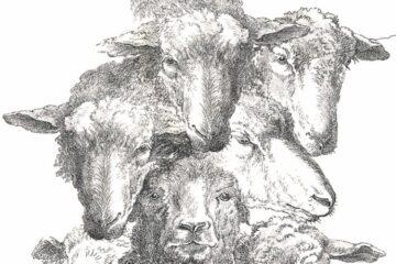 Gunnar Gunnarsson: De goede herder
